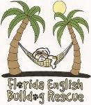Amazon.com: Profile for Florida English Bulldog Rescue.  Donate items from the rescue's wishlist!