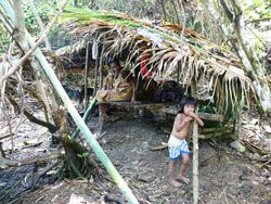 People such as this Forest Tobelo lose their territory to foreign companies who undergo mining projects after making agreements with city or national representatives who may not keep their interests in mind.