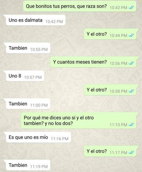 Estas son las conversaciones de Whatsapp más bizarras de todos los tiempos - Imagen 24