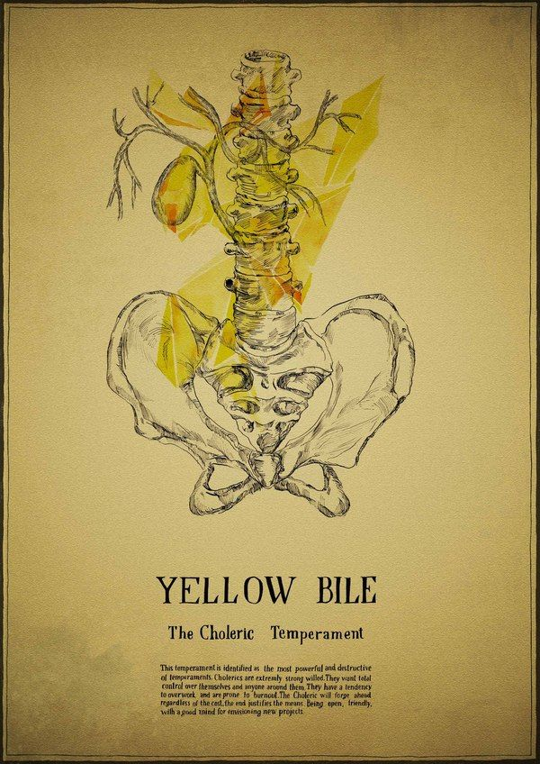 psychology and yellow bile Psychopathology is the scientific  blood, black bile, yellow bile, and phlegm  abnormal psychology animal psychopathology biological psychopathology.