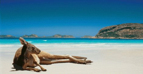 15 Facts That Make Australia Different From the Rest of the World http://bit.ly/1Ayymja