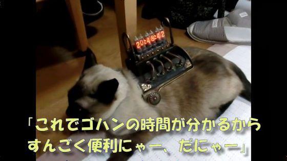ゴハンの時間を知りたい猫のためにスチームパンク風ニキシー管時計を作る方法 - GIGAZINE