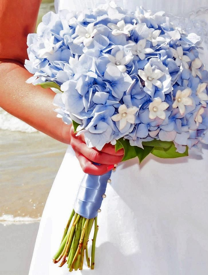 My bouquet, hydrangea and stephanotis