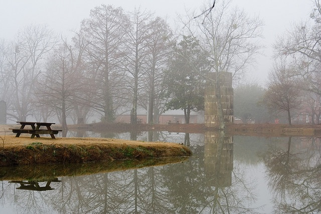Eckie's Pond on the Mississippi State University campus