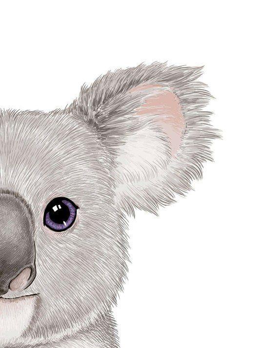Baby Koala Art Room Print Painting Decor Australian Animal Pos