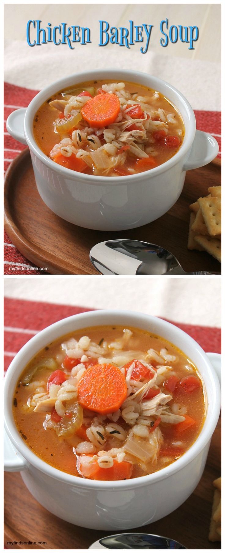 Quick and Easy Chicken Barley Soup / myfindsonline.com