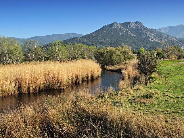 Région de A Balagna -La Balagne ---- Lozari le Régino en aval de son embouchure - Belgodère