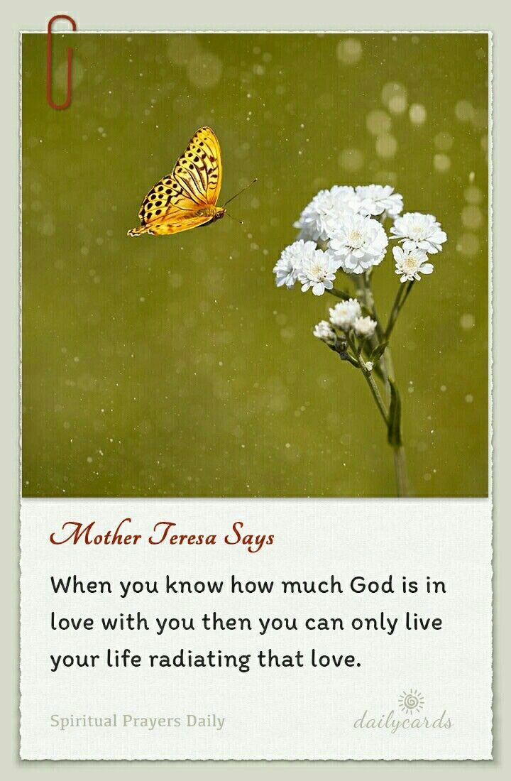 best ideas about mother teresa prayer mother st mother teresa when you know how much
