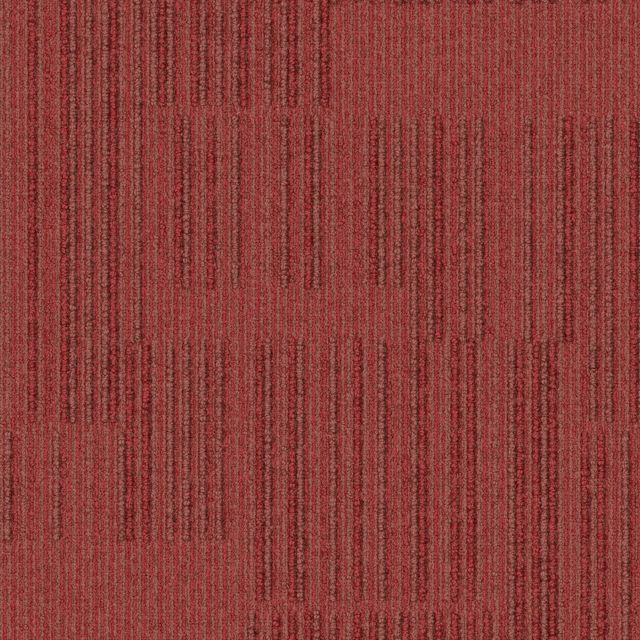 C-08 Interface Equilibrium Solidity (Red Office Carpet)