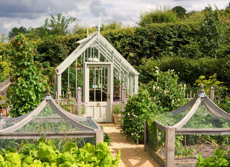 A National Trust Scotney greenhouse