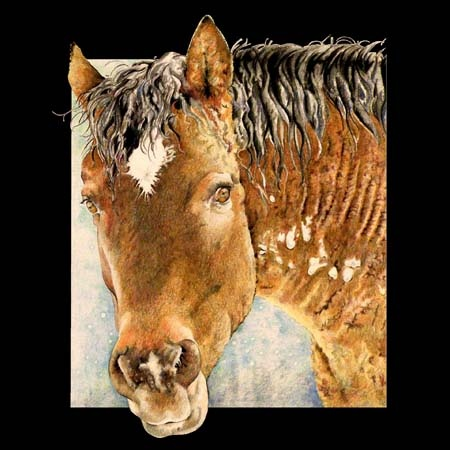 Nancy Allen: Worth Reading, Colored Pencil, Nancy Allen, Books Worth, Horses Art, Art Colors, Equine Art, Colors Pencil, Pencil Art