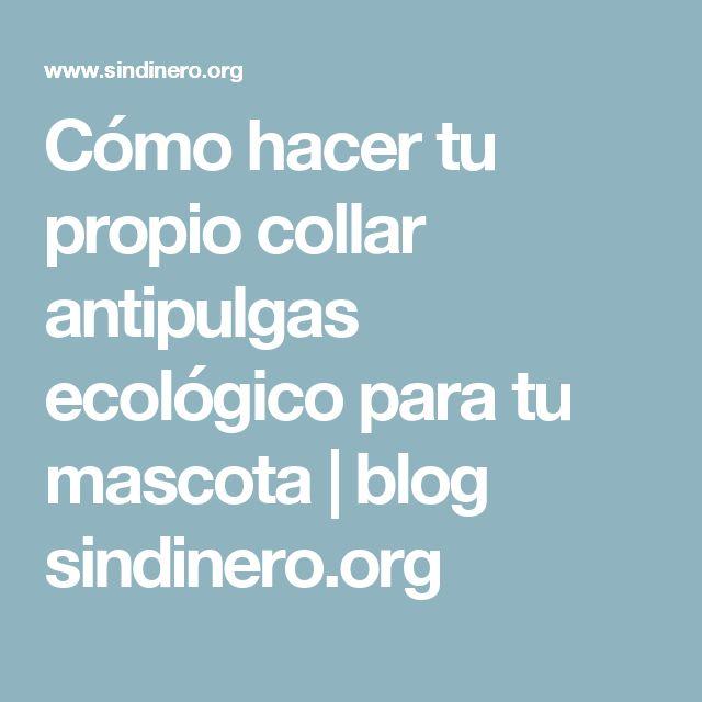 Cómo hacer tu propio collar antipulgas ecológico para tu mascota | blog sindinero.org