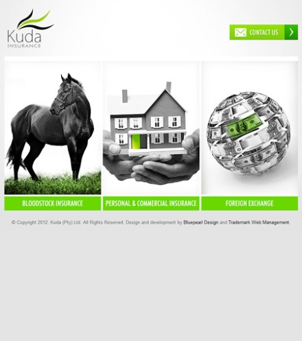 Kuda:    Very attractive and straight to the point. The Kuda website was designed for a group of young entrepreneurs who provide insurance for the South African horse racing industry. The Kuda website is a static information driven website with an administration interface embedded into the home page.
