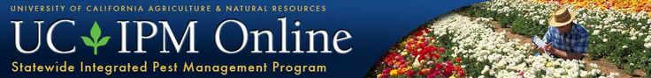 UC IPM Online: Integrated Pest Management Program statewide