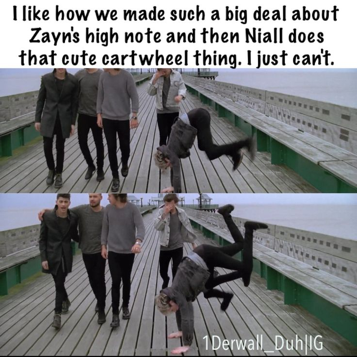 One Direction. Niall Horan. 1D Meme
