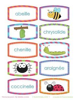 24 mots de vocabulaire sur la thématique des insectes. Matériel joliment illustrés.  À imprimer, plastifier, découper.  Matériel indispensable pour votre salle de classe.  Suggestions. À utiliser de différentes façons. 1. Imprimer 2 fois chaque page.  L'élève peut associer 2 images identiques. 2.