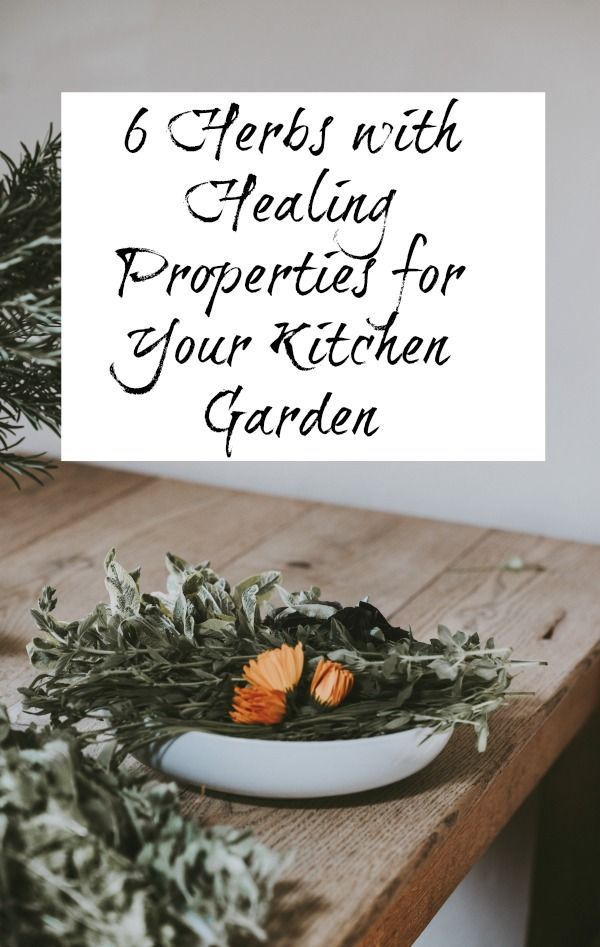 6 herbs with healing properties for your kitchen garden healing 6 herbs with healing properties for your kitchen garden healing kitchengarden herbs solutioingenieria Choice Image