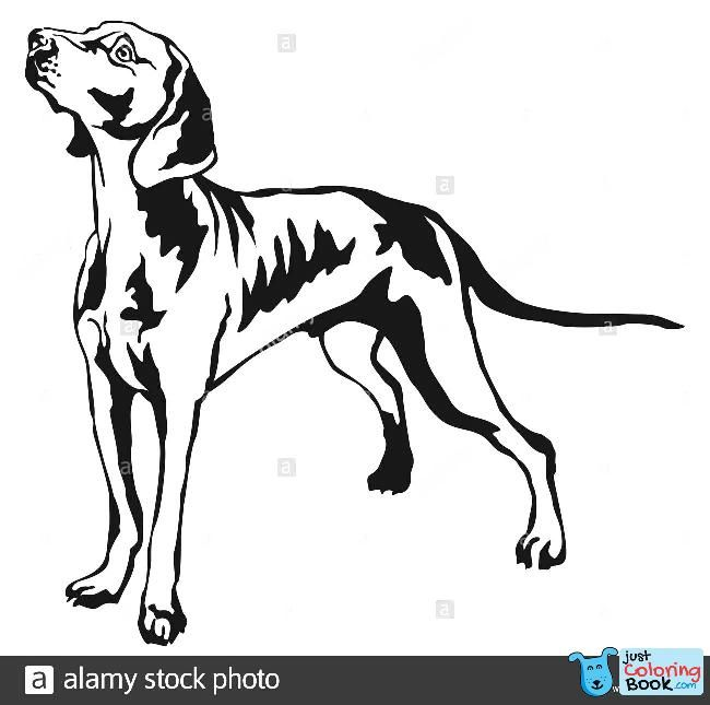 Weimaraner Coloring Pages Appliedprintco For Weimaraner Coloring Pages Dog Coloring Page Dog Coloring Book Coloring Pages
