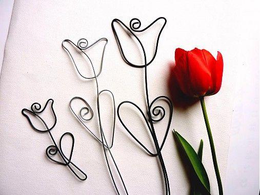 astra / ve?k� tulip�n