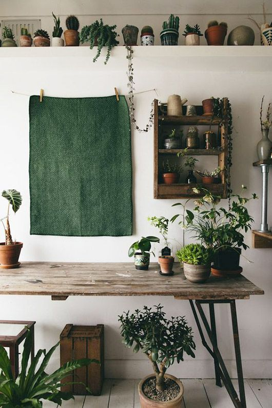 green fabric and green houseplants in pots. / sfgirlbybay