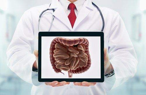Lactobacillus Gasseri Supplement Uses & Side Effects