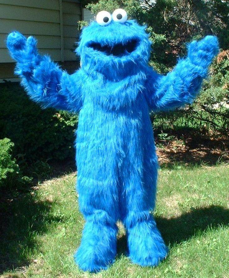 Cookie Monster Costume Rental Sesame Street Kids Birthday