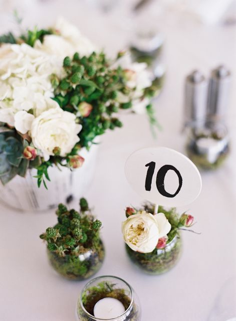 Place card holders/ favors