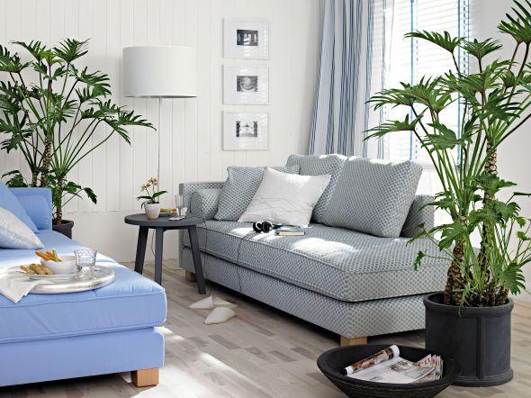 So lassen sich Wohnzimmerpflanzen am besten dekorieren!