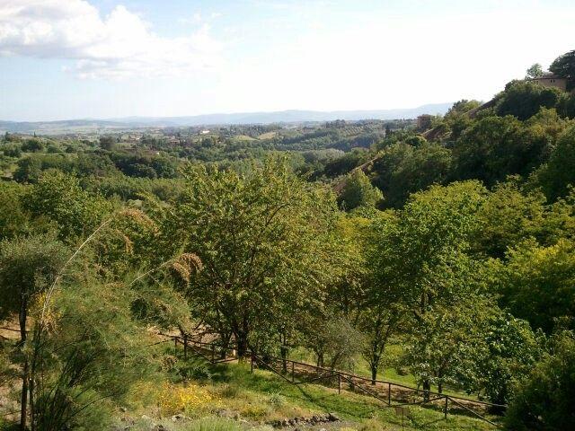 Botanical Garden Siena