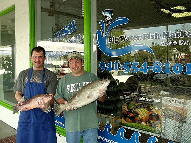 1000 images about siesta key shopping on pinterest for Florida fish market