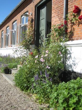 Front door and red roses, Æblegaarden B&B, Langeland, Denmark, www.aeblegaarden.dk