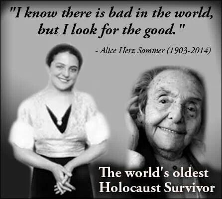 Holocaust Survivor Quotes Custom 41 Best Alice Herzsommer Images On Pinterest  Summer Recipes