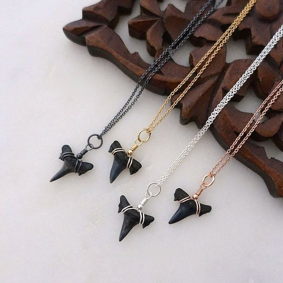Small Fossil Shark Tooth Necklace Gold Shark Tooth by sorastudio