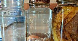 How to make your own organic fertilizer. Homemade liquid fertilizer recipes.