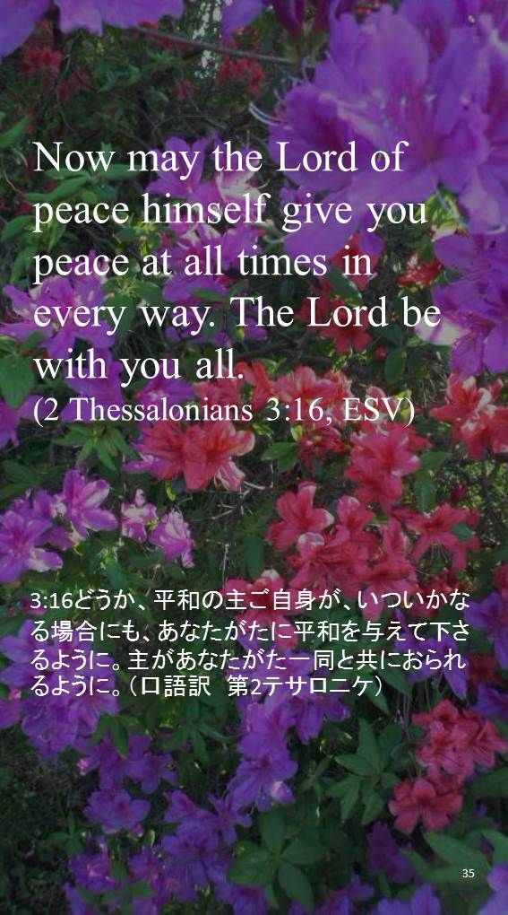 Now may the Lord of peace himself give you peace at all times in every way. The Lord be with you all.(2 Thessalonians 3:16, ESV)
