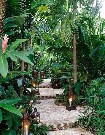 Lush tropical planting and informal path. Pinned to Garden Design by Darin Bradbury.