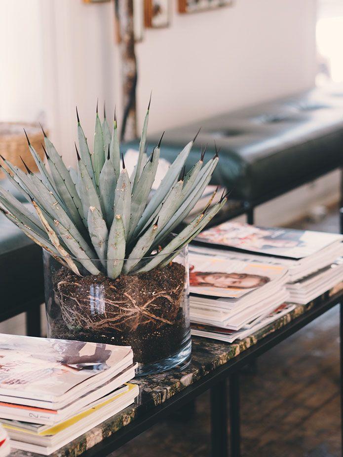 KRYSTALLER OG GRØNNE PLANTER Før jeg dro til Sverige tilbragte jeg søndagen sammen med min gode venn og frisør Nikola på salongen Gevir på Grunerløkka (sponset behandling). Det er ikke ofte jeg er i denne salongen, men hver gang jeg er her blir jeg så inspirert! Jeg elsker interiøret! Fine speil, krystaller og masse grønne planter