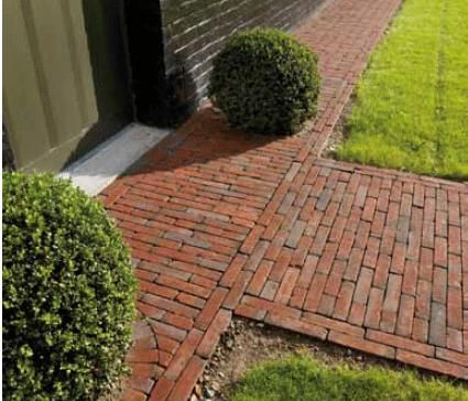 17 b sta bilder om tuin idee n p pinterest tr dg rdar delphiniums och rttr dg rd - Terras rand idee ...
