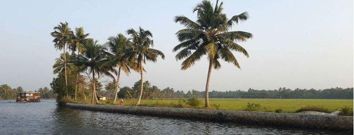 #malayalamlive #godsowncountry #kerala http://ift.tt/1lFMnAt http://ift.tt/223teOC