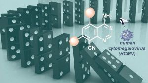 Chemists at Friedrich-Alexander University Erlangen-Nürnberg (FAU) headed by Prof. Dr. Svetlana B. Tsogoeva at the Chair of Organic Chemistry I have made research into pharmaceutical ingredient synthesis more efficient, more sustainable and more environmentally friendly. They have developed a...
