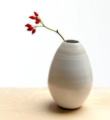 My Bulba Vase design realized at Red Clay Home