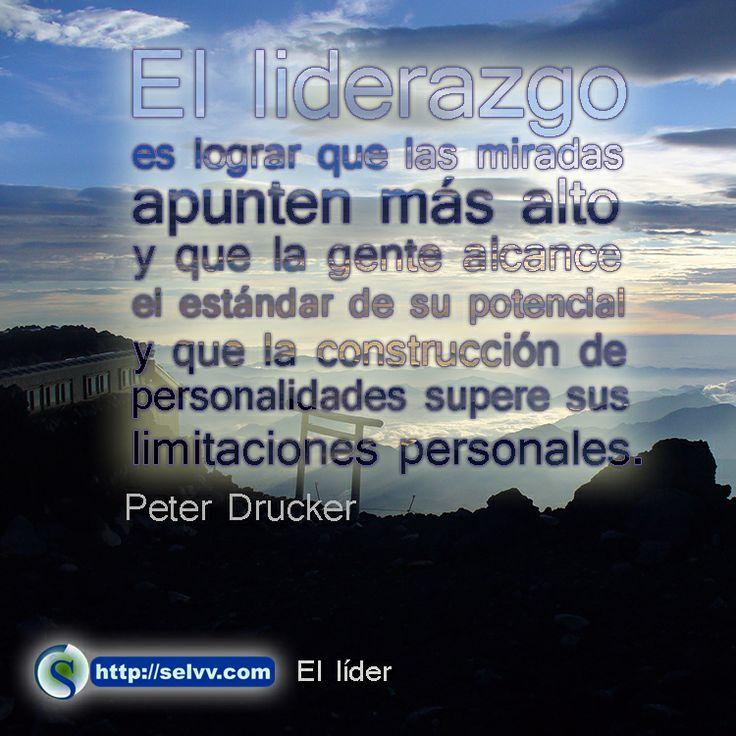 Amamos Al Lider Bet - image 9