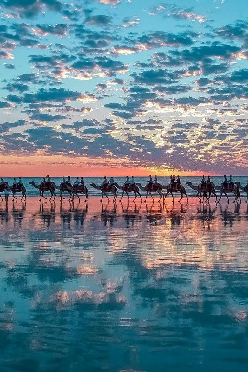 Camel ride, Cable Beach in Broome, Western Australia by Shahar Keren.i love colors.