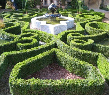 knot garden In the garden Pinterest Knots