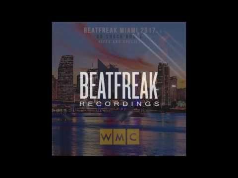 DO SHOCK BOOZE - Riffs and Species (Original Mix) [Beatfreak Recordings]