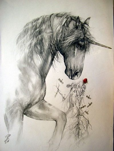 Unicorn again! :D <3 I love this drawing I wish I could do that *o* it is so pritty