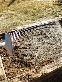 Soil Building Steps for Gardening Success