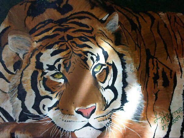 Relaxing Tiger. My very first oil painting i refuse to sell!! I love tigers. Had a few offers for it to. Sorry guys not for sale.