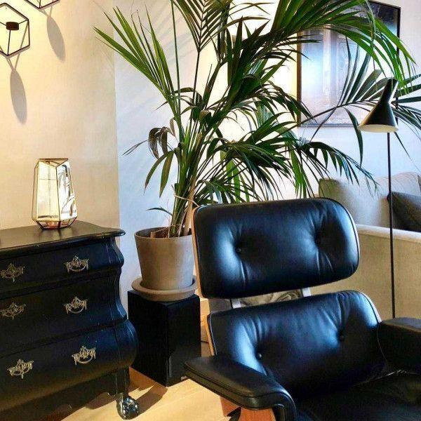 Eames Lounge Chair Fauteuil Nieuwe Afmetingen Palisander Vitra 2020