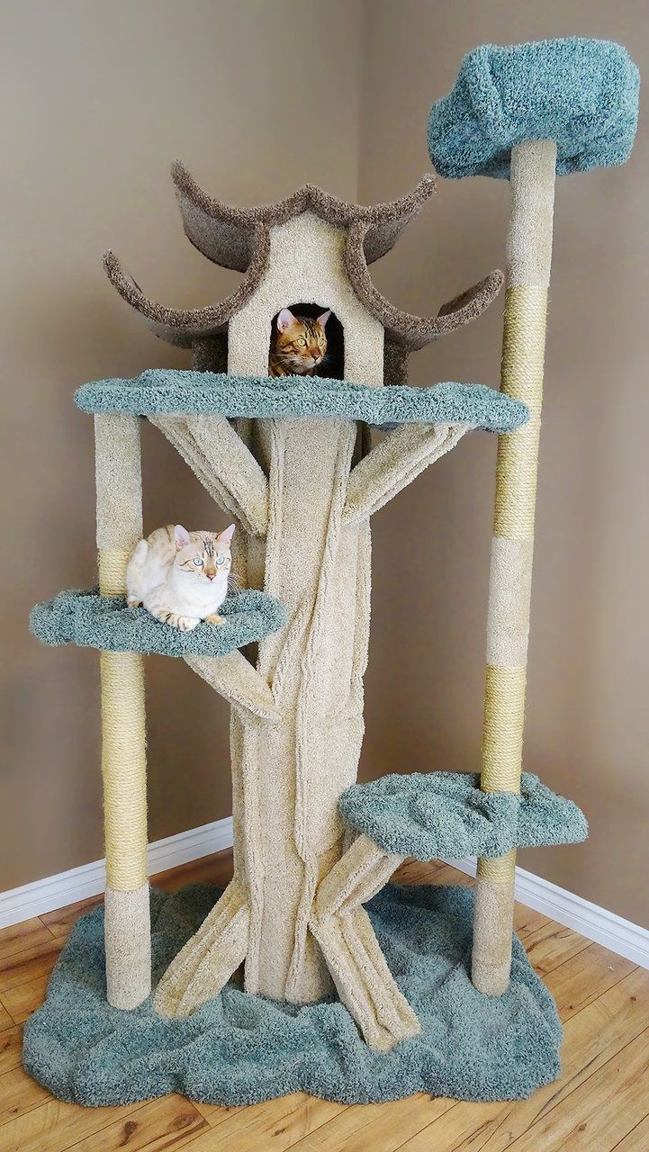 Unique cat tree new cat condos premier 7 foot tall cat playground catsdiyplayground